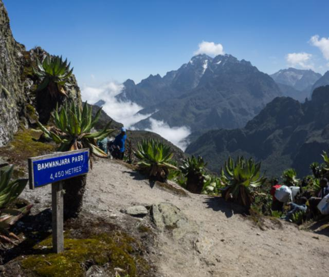 Mount Rwenzori Hike