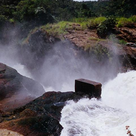Boat Cruise, Game Drives in Murchison Falls National Park