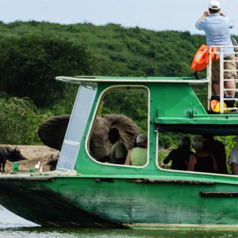 Morning Game Drive, Afternoon Boat Cruise