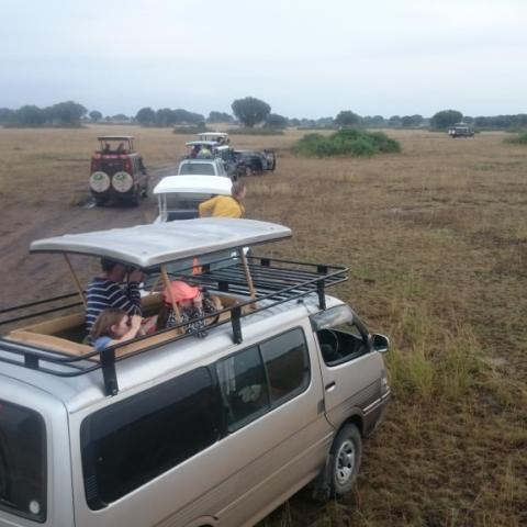 Transfer to Queen Elizabeth National Park and Game Drive